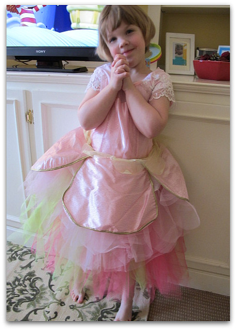Costumes whimsy filed under sewing tagged costumes fancy nancy tea party tutus 2 comments solutioingenieria
